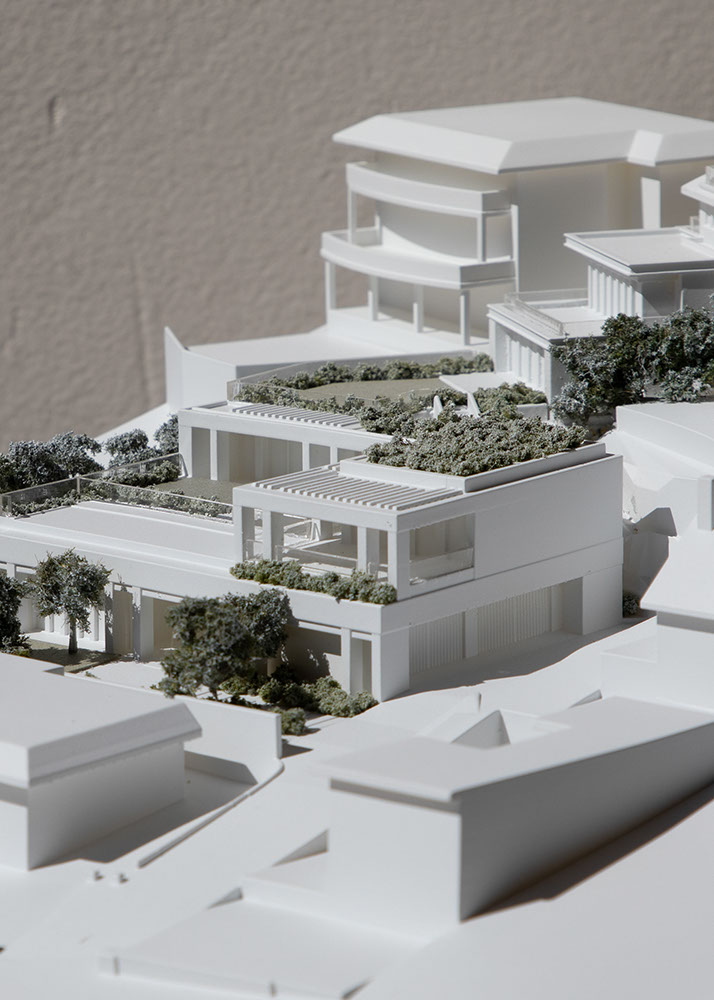 Woollahra Council DA Model